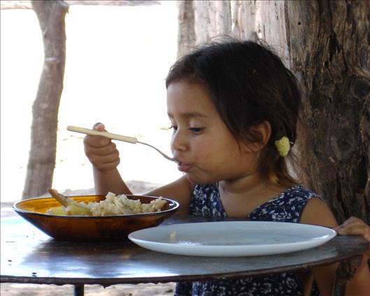 La desnutrición un impacto social y económico